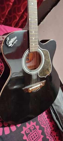 Signature guitar