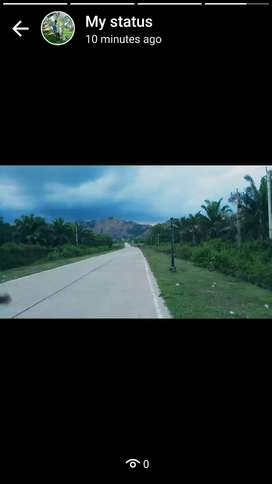 10 acres agriculture land in makavarapalem