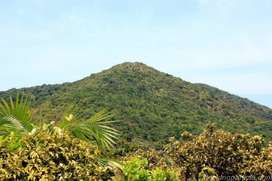 Plot for Sale in Rangat Middle Andaman