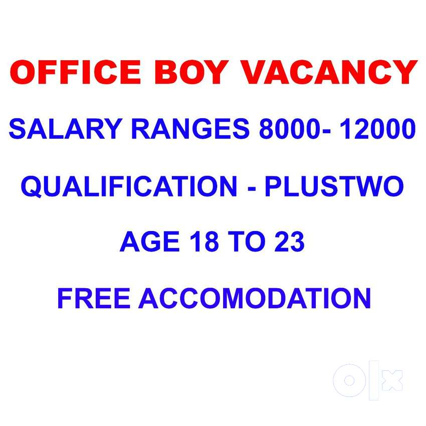 WE ARE LOOKING OFFICE BOYS 0