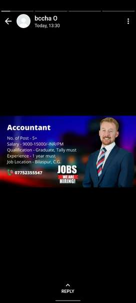 looking for accountant