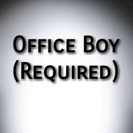 Need Office Boy Urgently!