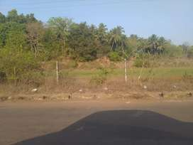 Settlement land with Sanad main road touch