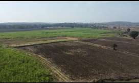 72 acre agriculture land