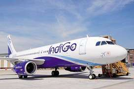 Urgent Hiring in Indigo Airlines..Mega Drive for Indigo Airlines..NOTE
