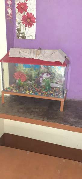 Fish aquriam is very good condition