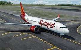 Spicejet Airline gives opportunity Make Future for Fresher and Experie