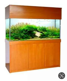 Any size aquarium (40% off) just tank