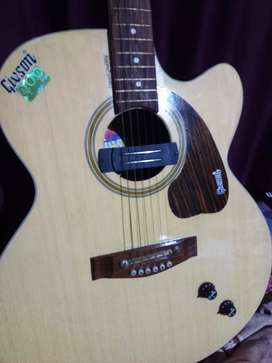 Gibson guitar with electric