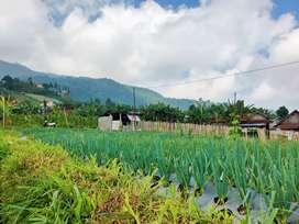 Tanah murah kemuning Karanganyar dekat kawasan wisata view istimewa
