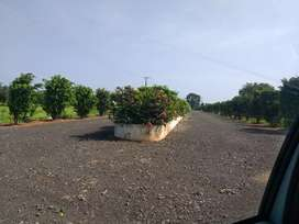 Fast growing residential area PLOTS for sale