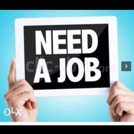 Typing job from home data entry job urgent opening