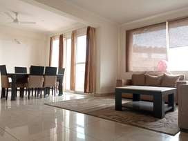 3bhk flat in sector 91 mohali