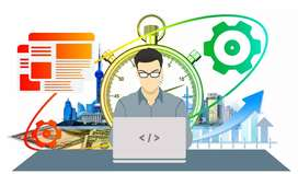 Website Developer (wordpress)