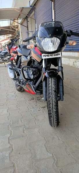 Addition model 150cc