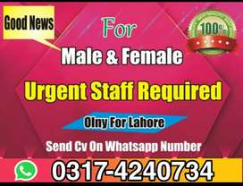 company required staf male female can apply .