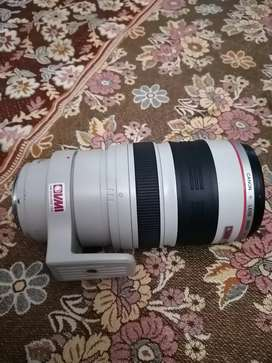 Canon 100 400mm IS L USM