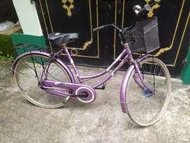 Bicycle is 2 yrs old.It's a ladies bicycle.Model name:Hero Miss India.