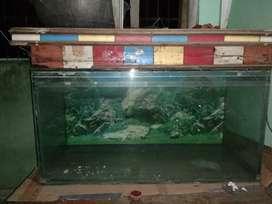 Large size Fish Aquarium