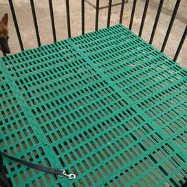 Cages for dogs and other animals