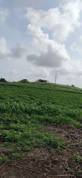Land for contract farming, tabelo