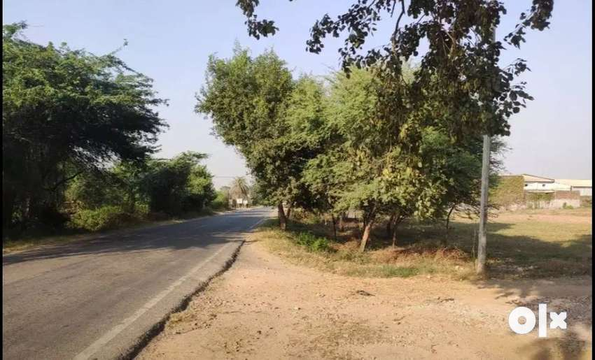 220 sqyd Commercial Plot on Main Highway(Patiala-Cheeka Road)For Sale