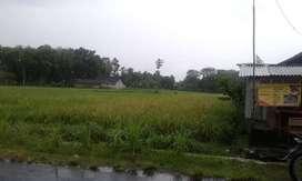 Tanah Luas 7000m Zona Industri/Gudang dekat SGM Prambanan,jl Raya Jogj