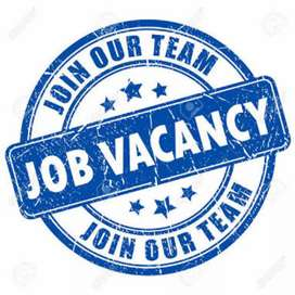 Jobs  openings in DATA ENTRY& OFFICE ASSISTANT.
