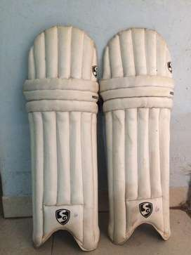 Crickets pads SG belive..become