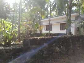 House with 30cents land for sale in Balussery