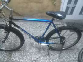 Phoenix mountain bike for sale