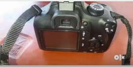 Canon EOS 3000D and 500D