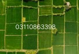 10 marla plot on main sharereshm mangal .urgent selling