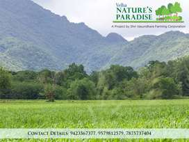 Feel peace & comfort under the blessings of nature