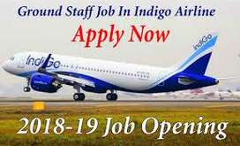 Airlines Job - indigo Airlines Opened @ CCE , Cabin Crew, Luggage Dept