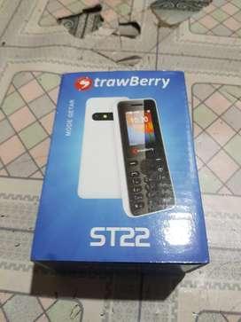 Hp StrawBerry ST22