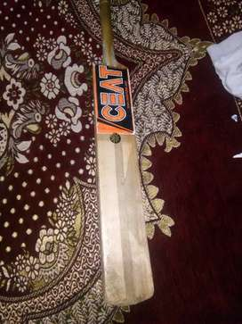 Ceat new Kashmiri willow bat