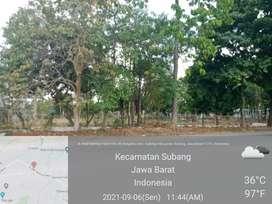 Disewakan Tanah Kosong Subang