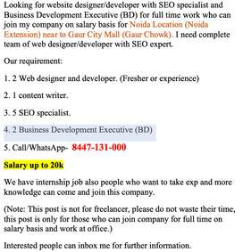 Web Developer/Designer, Seo specialist, Business Development Executive