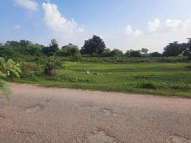 Plots for sell