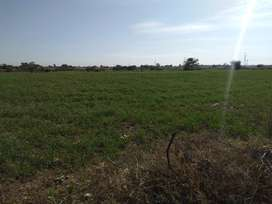 25x50 Marla Plot For Sale
