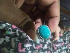 Bacan doko bluishgreen
