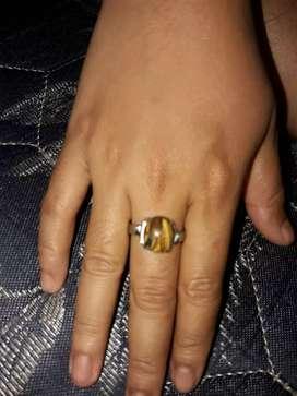 Batu cincin fosil kayu
