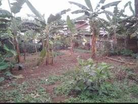 Dijual Tanah 323M Harga Murah Corona