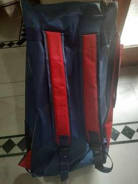 SG Cricket kit on sale