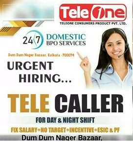Tele Caller Executive(TCE)