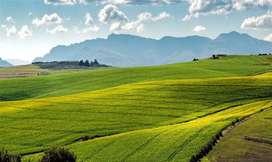 Agriculture /farmhouse land