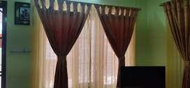 WALLPAPERS, WINDOW BLINDS :MEGA OFFER
