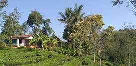 Resort/agriculture land