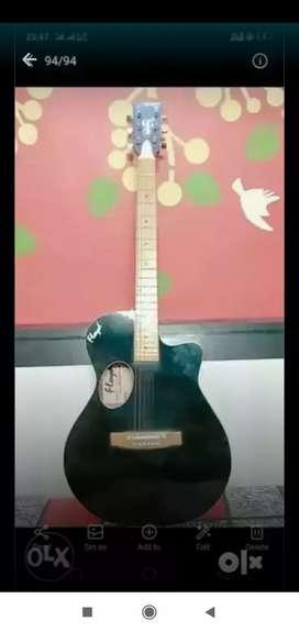 Floyd Guitar